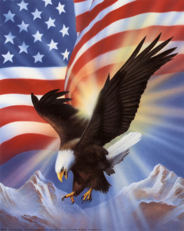American-eagle-and-flag-ii_medium