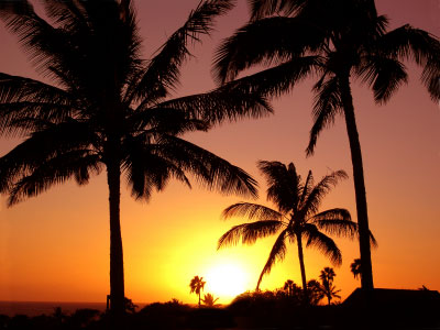 Kauai-luxury-vacation-rental_medium