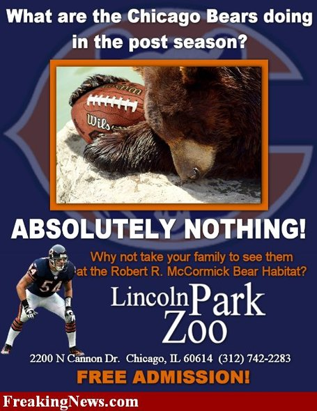 Chicago-bears--15205_medium