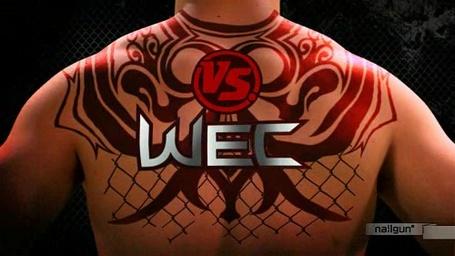 Wec_logo_medium_medium