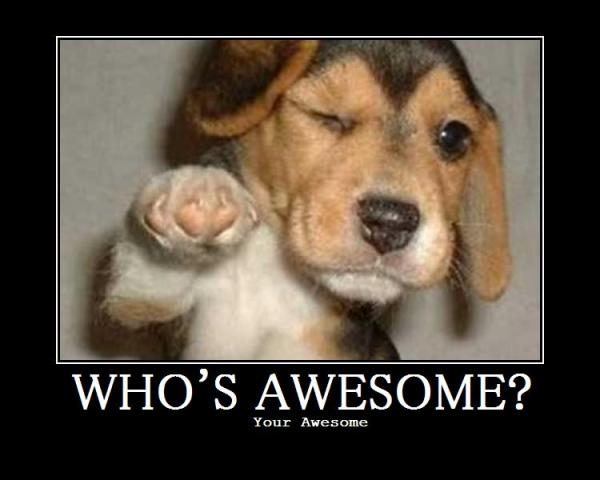 whose awesome