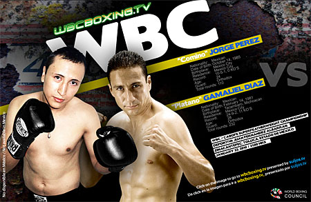 Wbcboxing_medium