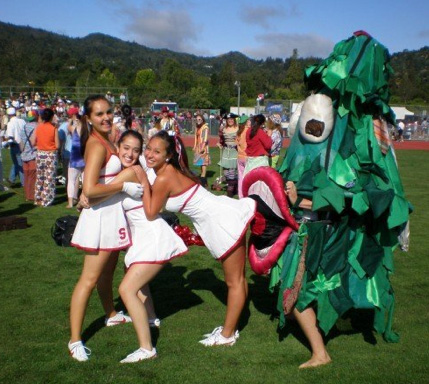 01stanfordtree_medium