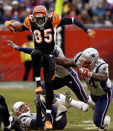 Ap-pats-bengals-chad-johnson-leaps-over-patriots_7579083_jpg_medium