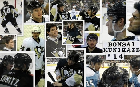Collage_20kunitz_medium