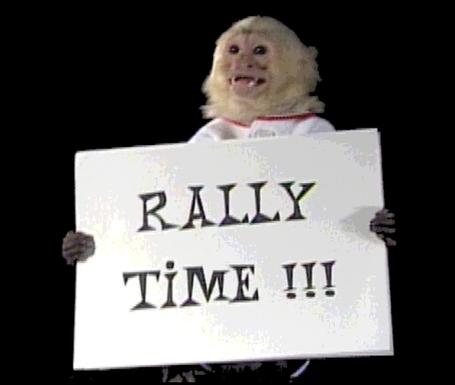 Rally1_medium