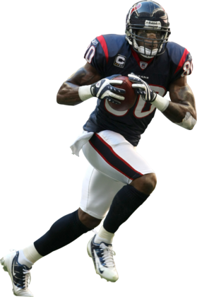Andre-johnson_medium