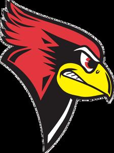 Illinoisstateredbirds_medium