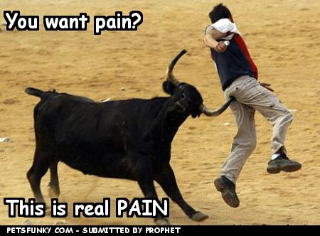 Funny-pictures-you-want-pain-373fdc2d2f_medium