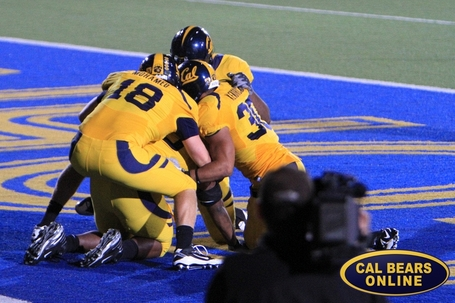 Cal_bears_football_10-1113_1277_medium