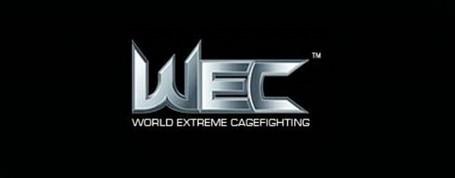 Wec-logo-640x250_medium