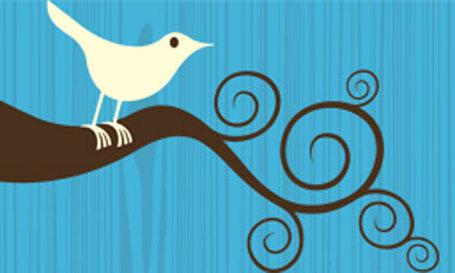 Twitter-bird-logo-001_medium