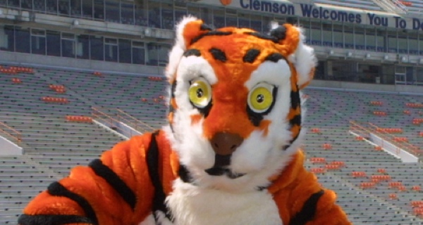 Image result for 8 ball clemson mascot