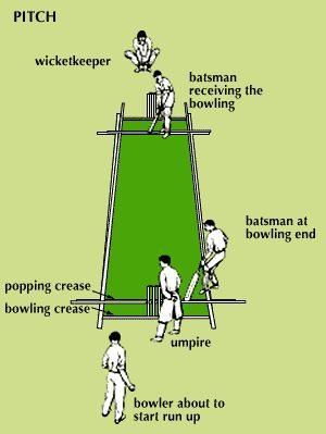 Cricket-pitch2_medium