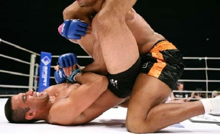 Werdum-overeem_medium