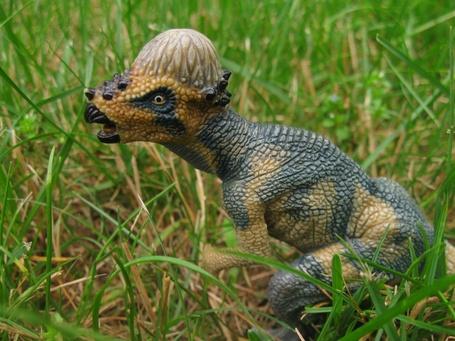 Dinosaurs_20007_medium