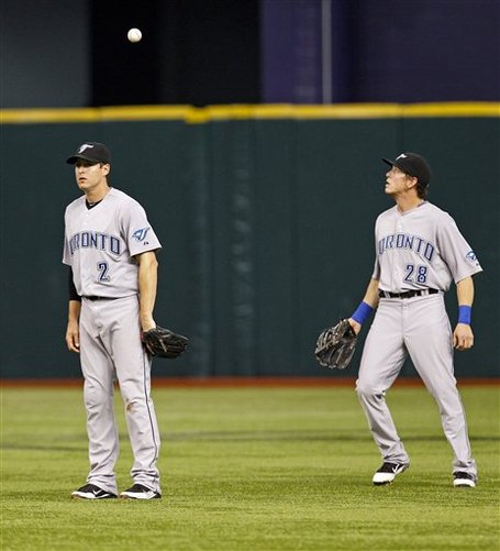 244459_blue_jays_rays_baseball_medium
