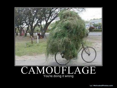 Camouflage1_medium