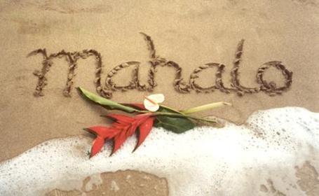 Mahalo300-1_medium