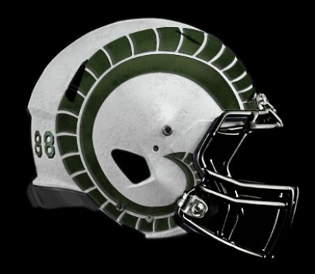 2012_helmet-white_with_green_bones-453x394_medium