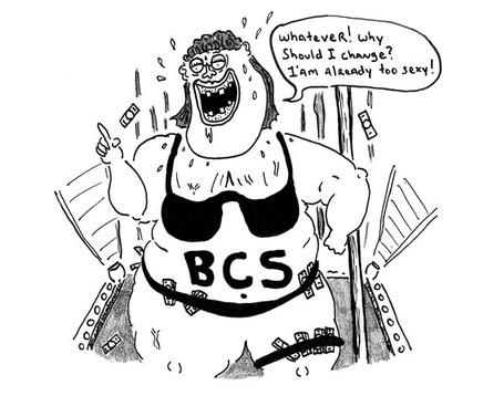 Bcsis_medium
