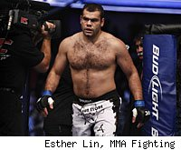 Gabriel Gonzaga won his UFC 142 fight.
