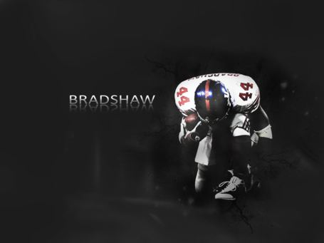 Bradshaw_wallpaper_by_thesurething_medium