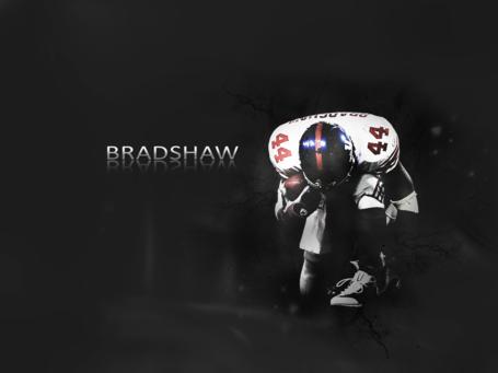 Bradshaw_wallpaper_by_thesurething_medium