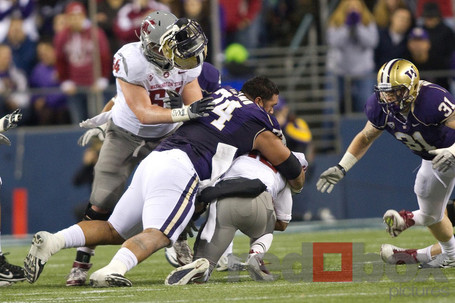 Apple-cup-2011-0836_medium