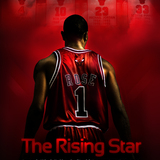 Derrick_rose_poster_by_rokasm