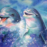 So_cute_dolphins