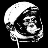Spacechimp