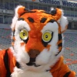 Clemson-tigers