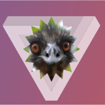 Emu_on_the_verge