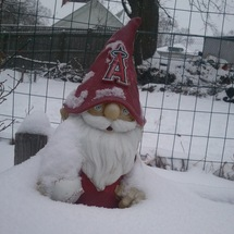 Hhsnowgnome