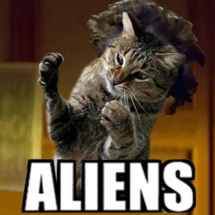 Cat_aliens