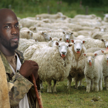 Johan-petro-with-sheep