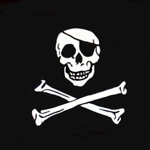 Bigstockphoto_pirate_flag_877869