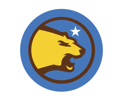 Large_bruinsnation