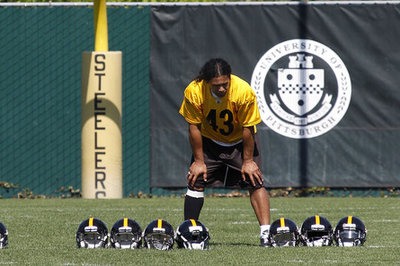 It's tough to believe Troy Polamalu is 'in best shape since college'